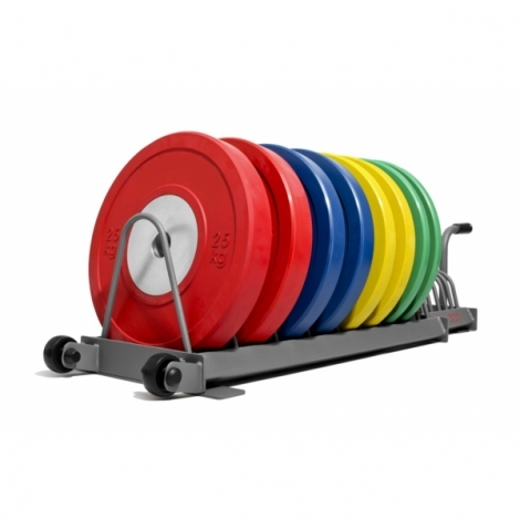Подставка для бамперных дисков Fitnessport DR-04