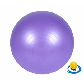 Мяч для фитнеса (фитбол) 65 см Newt HMS фиолетовый 487-626-1-V